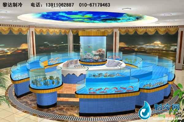 名称:海鲜鱼缸;; 专门设计制作维护各类海洋观赏