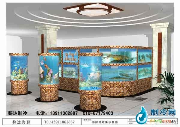 专门设计制作维护各类海洋观赏鱼缸; 海鲜池_pq图片; 自制鱼缸过滤
